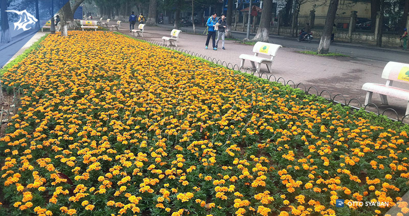 foto-diary-simamaung-jalan2-ke-hanoi-IMG_1593